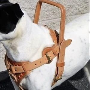 Other - NWOTs Tan Leather Harness - Med Sz Dog Handmade
